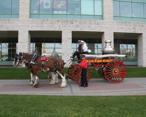 Bytown Brigade member Bernie Matheson w Horse Drawn Steamer paticipating at Ceremony 755